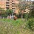 Video 360°. Parco giochi abbandonato tra via Achille Tedeschi e via E. Torelli Viollier
