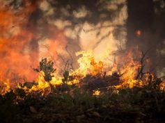 Monterotondo. Rischio incendi: prevenzione e controllo del territorio con aerofotogrammetria