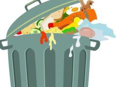Frascati, lotta all'abbandono dei rifiuti con le fototrappole