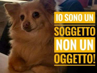 """Manifestazione nazionale """"Soggetti non oggetti"""" organizzato dal Comitato Tutela Diritti Animali"""
